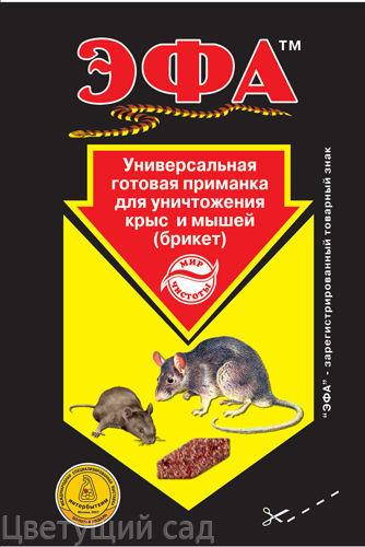 приманка для крыс эфа
