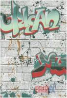 Обои бумажные 0,53х10м 0108003 Граффити зел 03 С1-БО (Минск) КЦ14 - Интернет-магазин «Строительный двор Морозов»